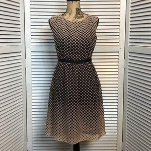 LOFT Polka Dot Dress - Sz 6